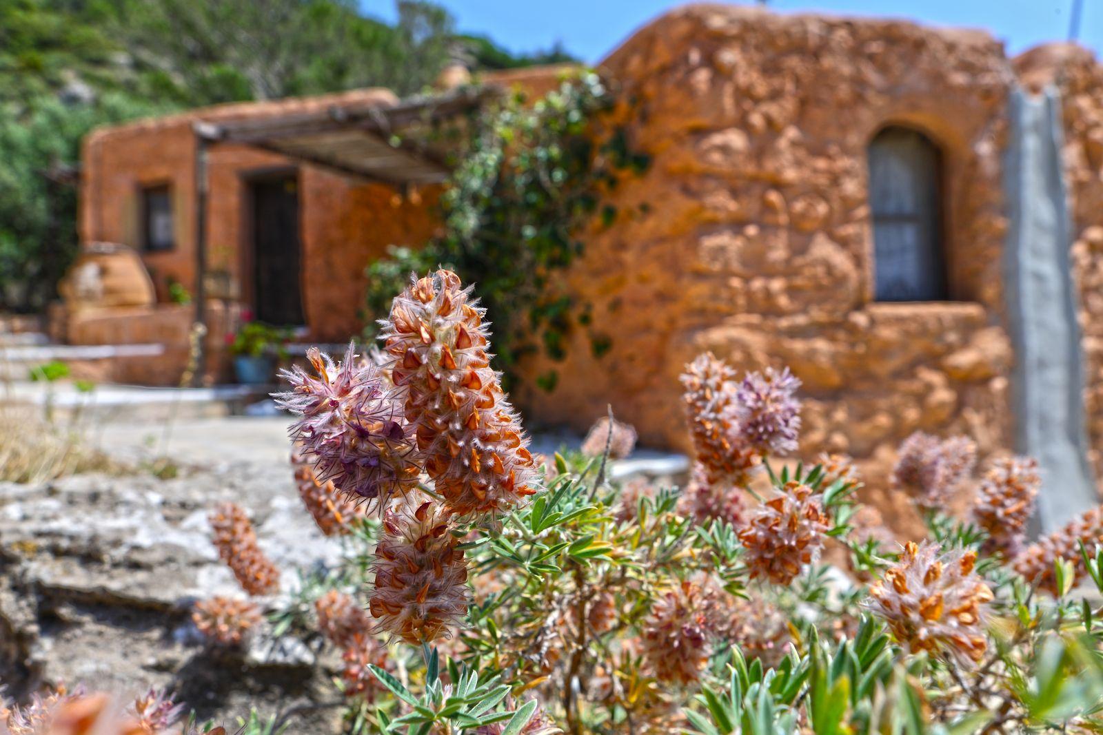Aspros Potamos At Makrigalos-Crete Where Time Seems To Have Stopped