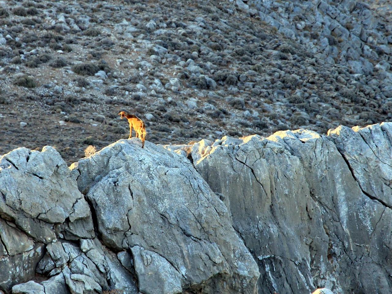 Photo Of Day : Cretan Mountains - Amazing Crete