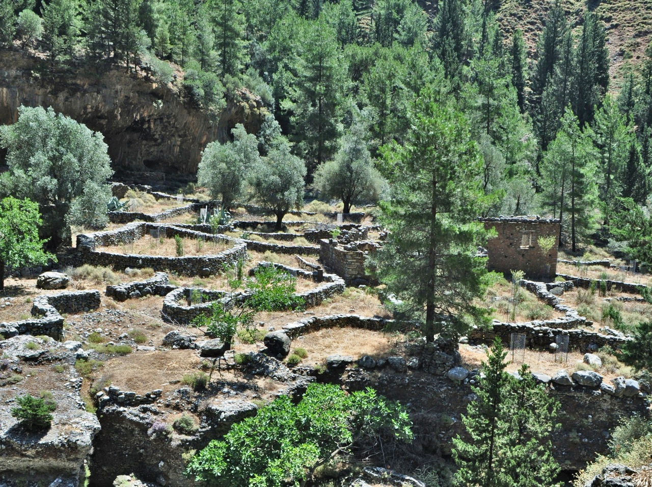 Samaria Gorge - Small Group Tour Activity - Crete