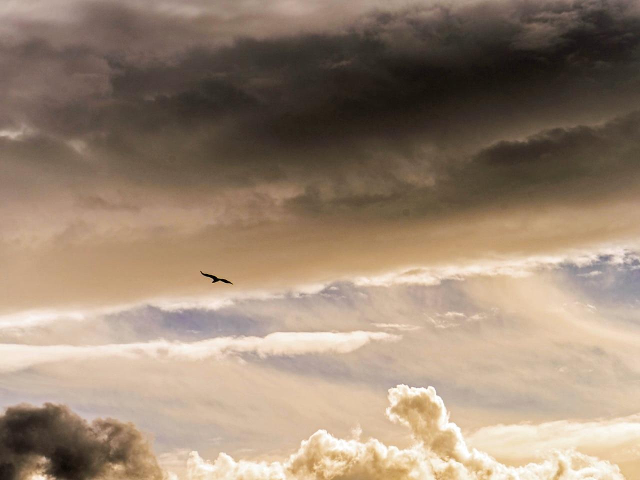 I wish I could fly .... Cretan sky