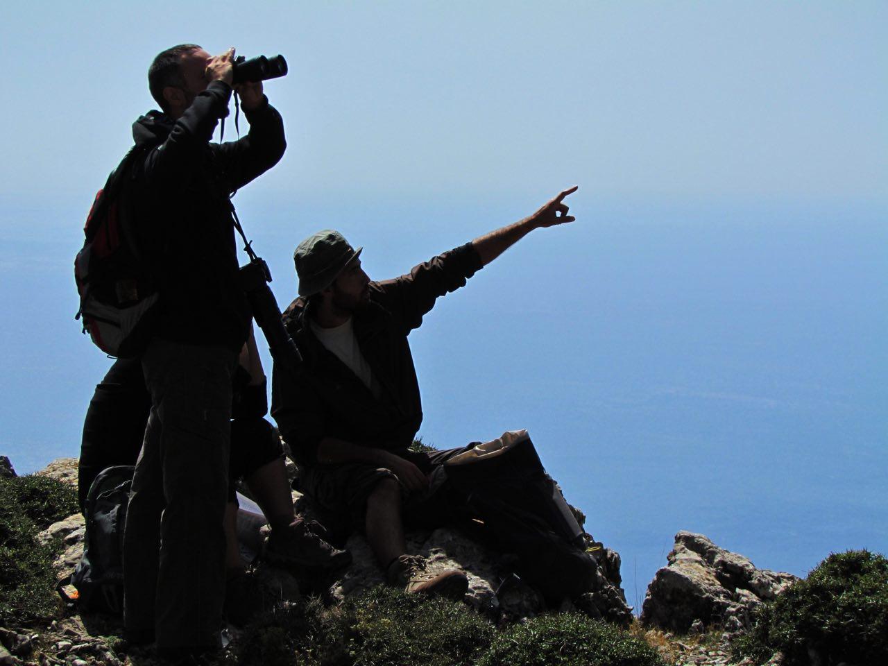 Trekking platania gorge amari, Bird Watching Platania Gorge Amari Valley, rethimno birdwatching, rethymno crete birdwatching, psiloritis geopark crete, natura 2000 crete, unesco geopark crete, activities rethimno crete, nature lovers activities crete