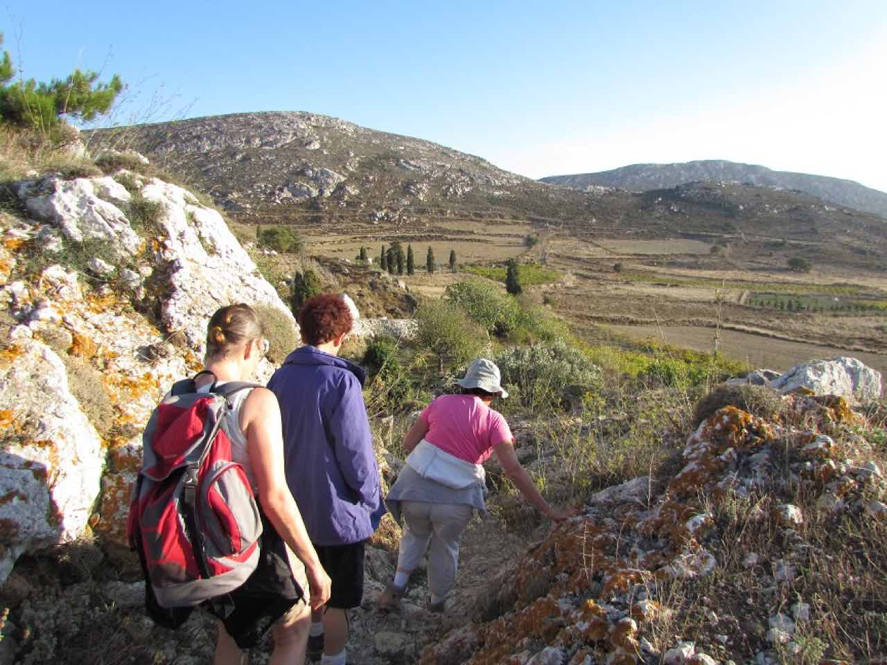 Wild Herbs Of Crete In Sitia Region, Use In Medicine & Gastronomy, wild herbs history tour, activity sitia crete, activities crete, indigenous herbs workshop tour, Petassos - Travellers with a purpose, alternative activities crete, things to do crete, nature and herbs