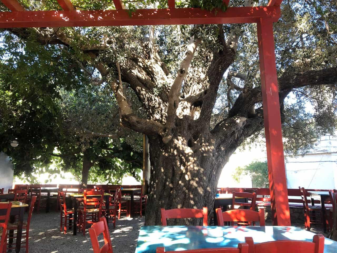 Paleo scolio anidri village, old school anidri village paleochora, eatery restaurant paleo scolio