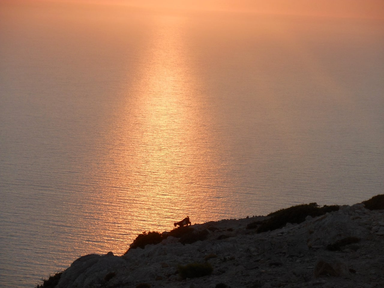 Gavdos Island Boat Round Trip, best boat trip to gavdos island, best boat trips sfakia crete, south chania activities, south chania, things to do sfakia chania, explore the island of gavdos, daily cruise gavdos island
