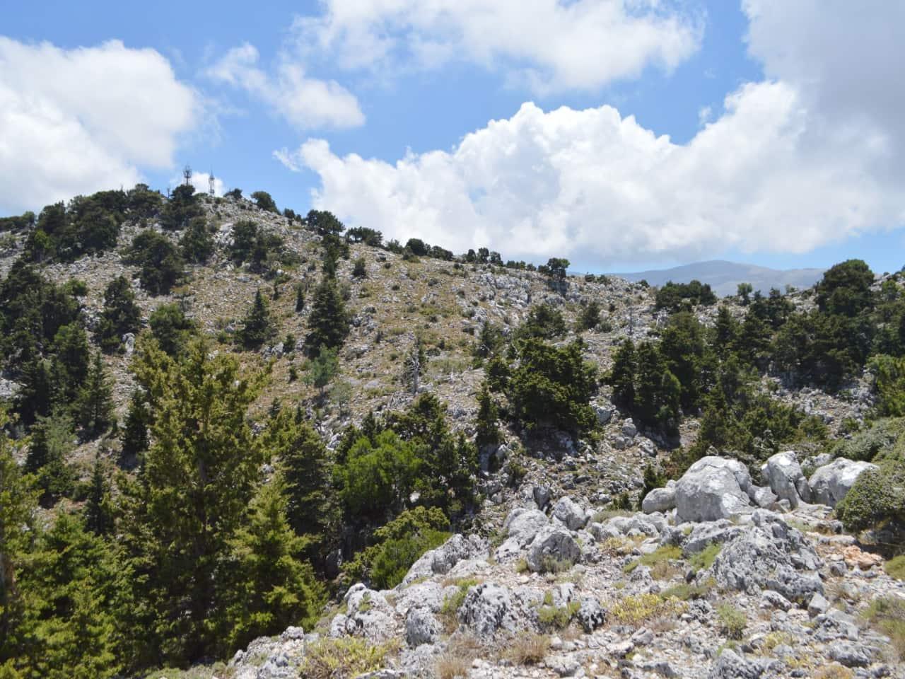 Hiking Trip Omalos Plateau Reikia Hills, activities chania crete, best hiking trip chania, circular hiking trip, easy moderate hiking trip chania, best activities crete, things to do crete, samaria gorge hiking,