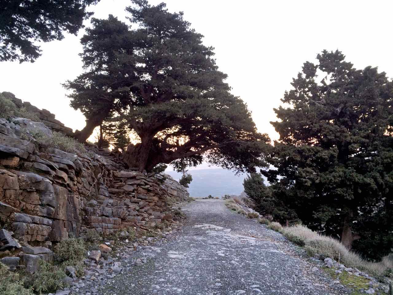 Explore the white mountains of Crete, jeep safari white mountains, visit traditional Cretan villages, learn Cretan history, learn traditions of Crete, lifestyle of a Cretan shepherd, original shepherd's hut visit, best activities chania crete, best jeep safari tours crete