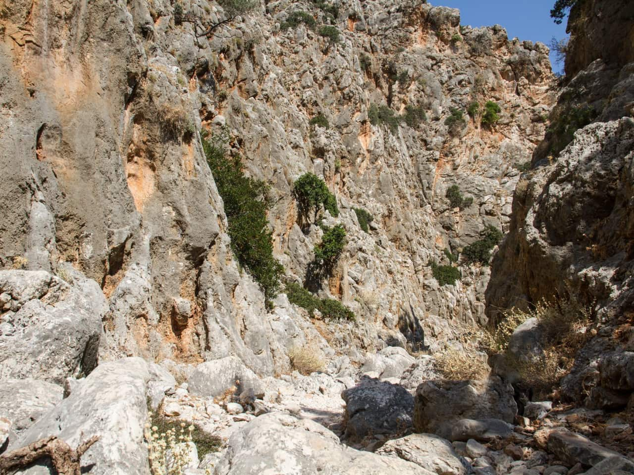 Avlaki Gorge in Chania