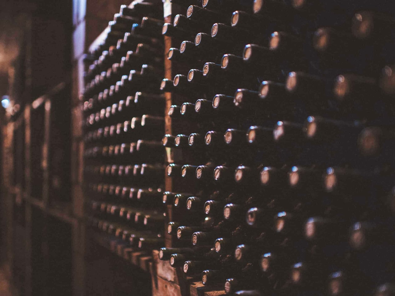 Wine tasting dourakis Winery, bio organic dourakis winery, cooking lessons dourakis winery, organic wine tasting chania crete, best activities chania crete, things to do chania crete, wine meal dourakis winery, cheese wine tasting dourakis winery