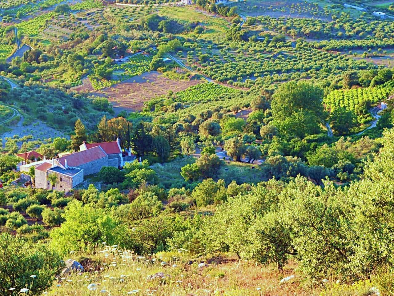 Vlahiana settlement, villages of Kerasia and Venerato, villa kerasia hotel vlahiana, villa kerasia inn venerato village
