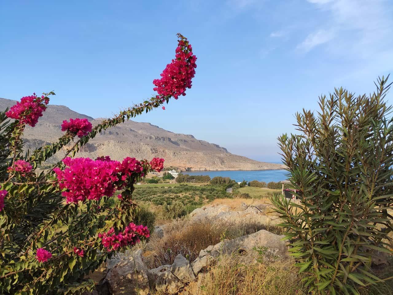 Kato Zakros hidden gem in lovely Crete
