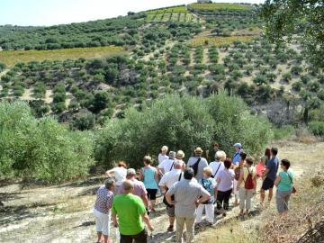 CreteTravel,Central Crete,Koronekes Olive Mill