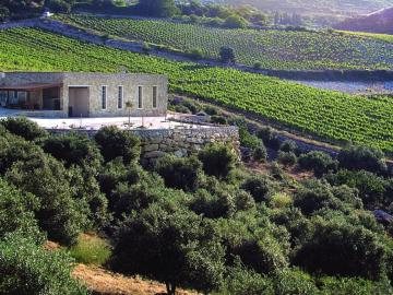 CreteTravel,Central Crete,Rhous-Tamiolakis Winery