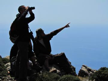 CreteTravel,Central Crete,Trekking & Bird Watching At The Platania Gorge Amari Valley