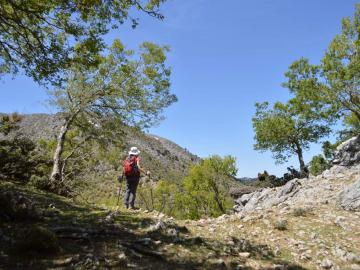 CreteTravel,South Crete,Full-Day Guided Hiking Trip Imbros Gorge & Marmara Marble Beach