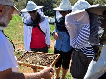 CreteTravel,West Crete,A Local Apiary & Bee-garden Visit