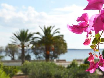CreteTravel,East Crete,Glaros Apartments - Kouremenos Beach